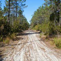 Intrepid Trails-16