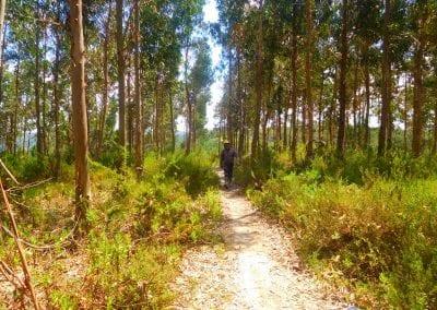 Intrepid Trails-34