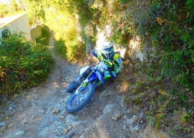 Intrepid Trails-40