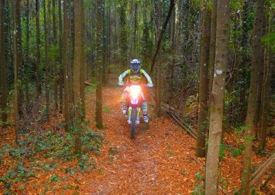 Intrepid Trails-45