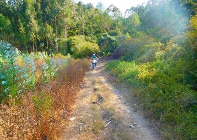 Intrepid Trails-47