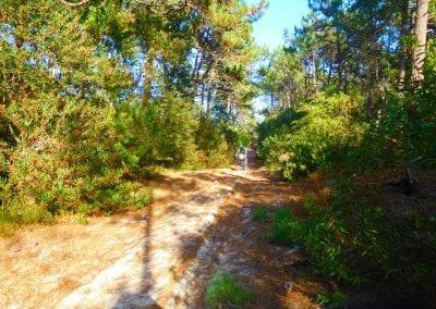 Intrepid Trails-48