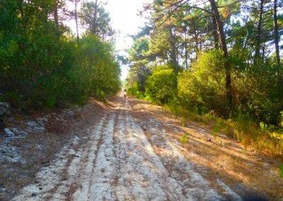 Intrepid Trails-49