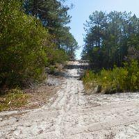 Intrepid Trails-7